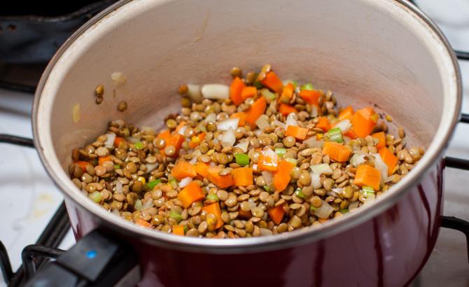 Lentil and Veggies - Lentil Soup